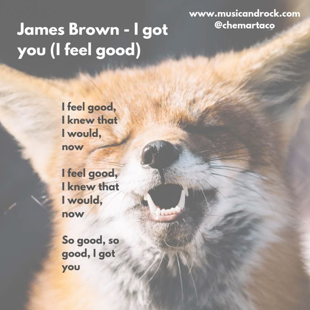 Tip de instagram con la letra de I feel good de James Brown