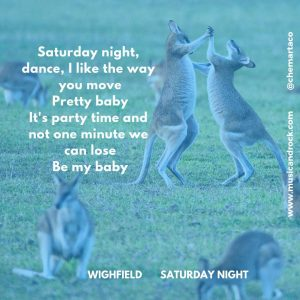 Wighfield - Saturday night