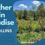 Another day in paradise, el último éxito de los 80 y primero de los 90 firmado por el único Phil Collins